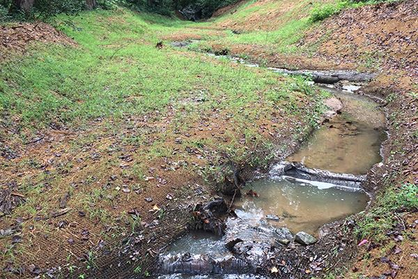 Showing Cleveland Park stream after restoration